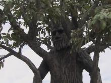 Walking tree wows fair goers with balance, beauty