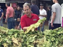 Tobacco-tying contest a State Fair tradition