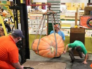 """A 948-pound pumpkin grown by Gail Newsom in Pinnacle and a 302-pound watermelon grown by Chris """"Superman"""" Kent from Sevierville, Tenn., took the top prizes in Tuesday's Great Pumpkin and Watermelon Weigh-Off at the N.C. State."""