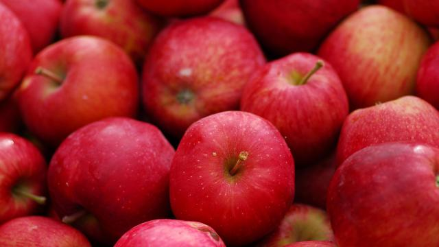 Apples are losing their shine among people who embrace an increasingly popular way of eating — called the low FODMAP diet — to improve their digestion and health. (Deseret Photo)