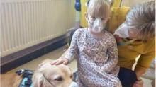 IMAGE: These Hospital Therapy Dogs Show Kids That Medical Procedures Aren't So Scary