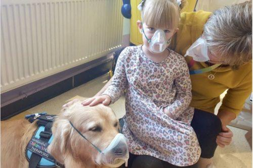 These Hospital Therapy Dogs Show Kids That Medical Procedures Aren't So Scary (Simplemost Photo)