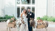 IMAGE: Some Couples Are Hiring Donkeys To Serve Drinks At Their Wedding
