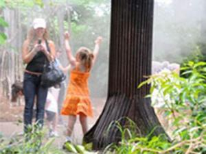 """The arbor mister, a metal """"tree"""" that sprays people, is a new feature at the N.C. Zoo's ZooCool event."""