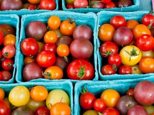 Fresh assorted cherry tomatoes on display and for sale during the Midtown Farmers Market at North Hills in Raleigh on August 6, 2011.