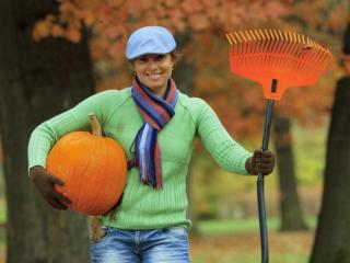 With the beginning of autumn comes time to decorate your home for Halloween and harvest, stock the pantry with heartier foods and spruce up your wardrobe with seasonal fashions. Transitioning into fall can be easy by staying on a budget and the shopping experts at Dollar General shared these tips for celebrating fall affordably.