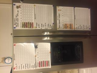 Chore and behavior charts adorn Carmen Rasmusen Herbert's fridge. (Deseret Photo)