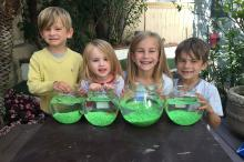 Dylan, Indie, Johanna and Emerson, left to right, after setting up our goldfish bowls,  Monday, May 2, 2016, in Orange County. (Deseret Photo)