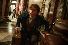 """Eddie Redmayne as Newt Scamander in Warner Bros. Pictures' fantasy adventure """"Fantastic Beasts and Where to Find Them,"""" a Warner Bros. Pictures release. (Deseret Photo)"""