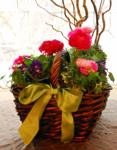 This St. Patrick's Day centerpiece was created by filling a lined basket with potting soil and nursery-grown flowers. (Deseret Photo)