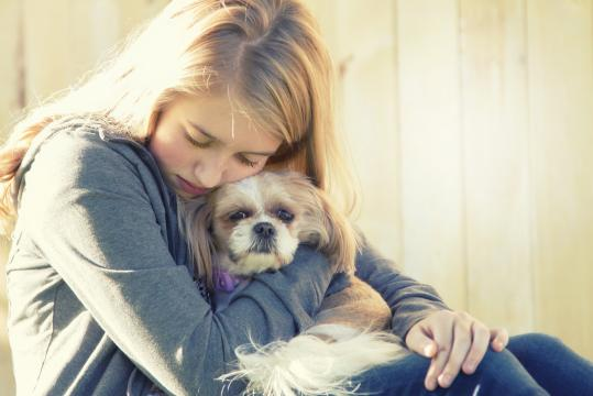 The American Veterinary Medical Association and the American Academy of Pediatrics are both warning that abuse of family pets may indicate that domestic violence and child abuse are occurring in a home. (Deseret Photo)