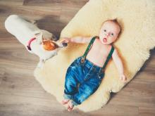 Should you have pets and newborn babies in the same house?