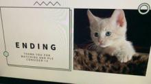 IMAGE: A Little Girl Made A PowerPoint Presentation To Convince Her Parents To Get Her A Cat