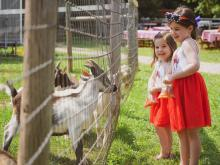 Two sisters feed goats at Spring Haven Farms in Chapel Hill on July 4, 2021. c