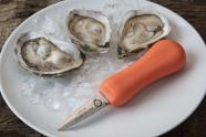 IMAGE: Shucking Oysters With an Eye on the Environment