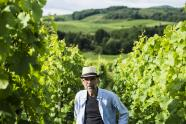 IMAGES: Silvaner, a Lovely yet Unloved Spring Wine, Needs Friends