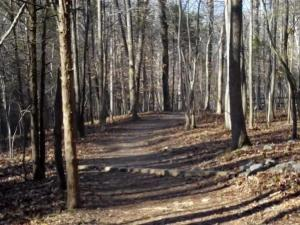 A trail at Eno River State Park.