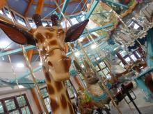 Pullen Park carousel
