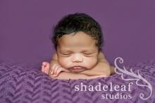 Photo courtesy: Shadeleaf Studios