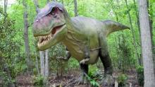 T. Rex at the N.C. Zoo
