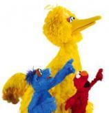 Big Bird, Elmo and Hu Hu Zhu star in a new show at Morehead Planetarium
