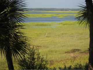 Marsh in Shelter Cove Harbor, Hilton Head, South Carolina.