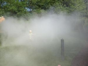 Into the Mist at the Museum of Life and Science