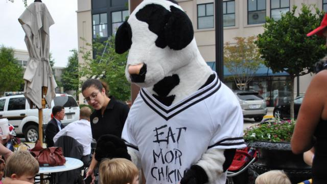 Meeting the Chick-fil-a cow.