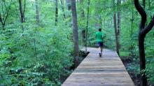 IMAGES: Explore four trails at this Cary nature preserve