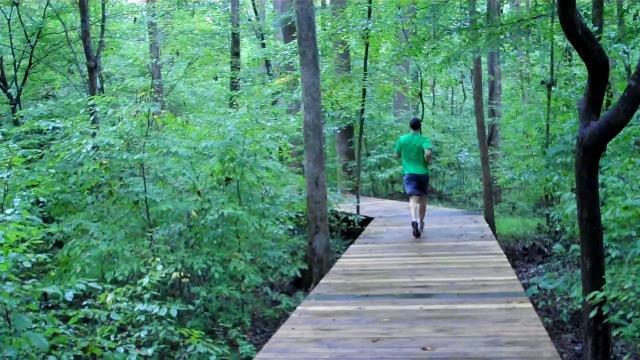 A boardwalk at Hemlock Bluffs Nature Preserve