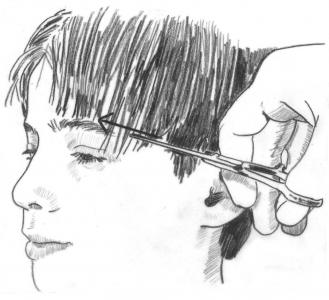 An illustration from How to Cut Children's Hair