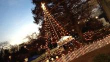 Christmas tree at Pullen Park for its Holiday Express