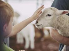 Children got a chance to get up close with farm animals at N.C. State's annual Farm Days this week.