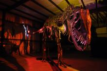 Dinosaurs in Motion at the N.C. Museum of Natural Sciences features 14 life size metal dinosaur sculptures that visitors can move using lever and pulleys or remote controls. It runs through Sept. 8.