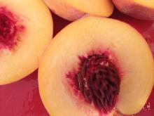 Peaches from Pee Dee Orchards, sold at the State Farmers' Market