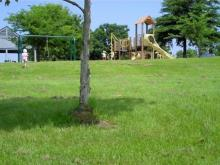 Ebenezer Church State Recreation Area