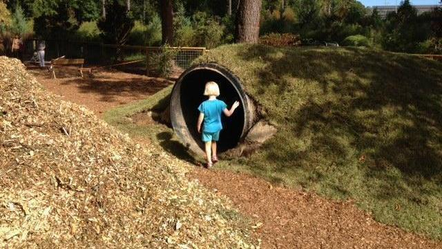 Kid-sized groundhog tunnel.