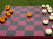 Pumpkin checkers at Ken's Korny Corn Maze