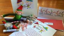 Have You Been Elfed gift bag