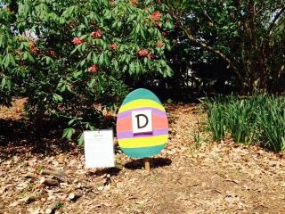 Spring egg hunt at JC Raulston Arboretum