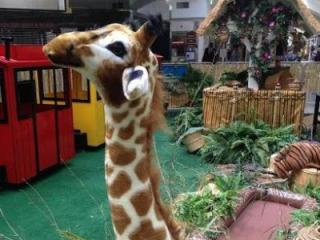 The kiddie train at Northgate Mall in Durham has returned with a new theme - a safari.