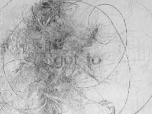 Kiki Farish, Move, 2012, graphite on clayboard, 14 x 22 in., Courtesy of the artist, © 2012 Kiki Farish