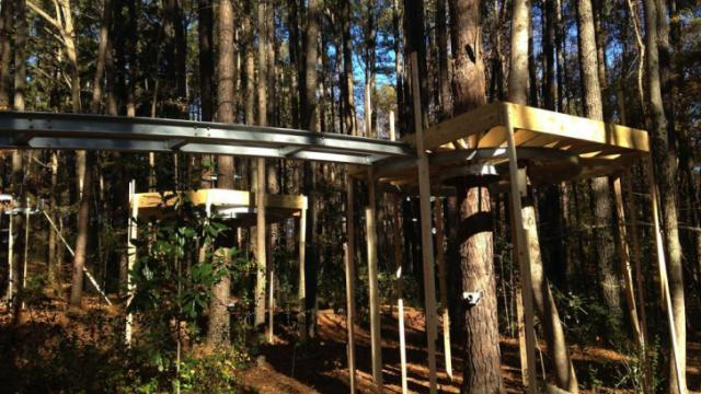Crews are working on the first tier of the lower tree houses in a new exhibit to open in 2015.
