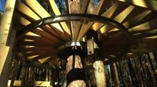IMAGES: Treehouses under construction at Museum of Life and Science