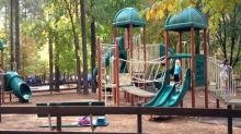 IMAGE: Playground Review: Harris Lake County Park