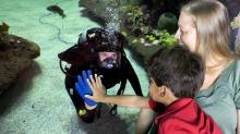 Visitors interact with a diver at the Fort Fisher Aquarium