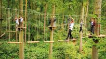 Go Ape treetop adventure course to open at Blue Jay Point County Park