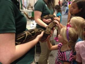 Some animals will be on display during the event at the natural scienes museum in Raleigh.
