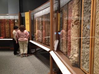 N.C. Museum of Natural Sciences