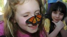 Girl and butterfly at N.C. Botanical Garden